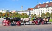 Vienna.AustriaArea and monumrnts. — Stock Photo