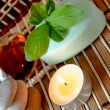 Spa candle, oils and mint soap — Foto de Stock