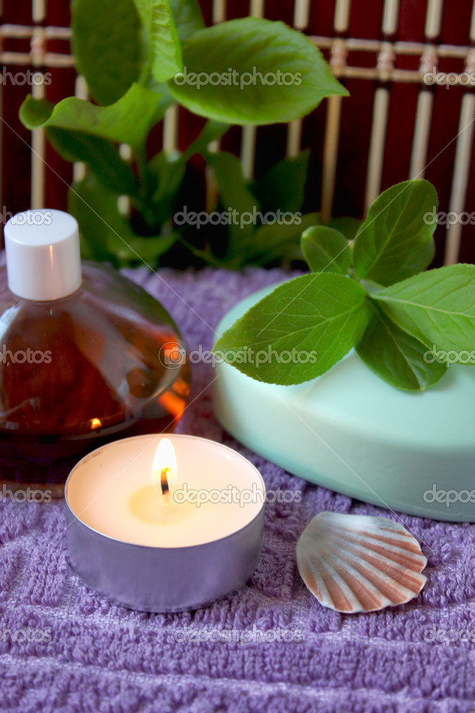 Spa candle, oils and mint soap  Foto de Stock   #10502778