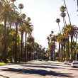 Palm streets of Beverly Hills — Stock Photo #9160961