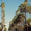 Palm streets of Beverly Hills — Stock Photo #9160973