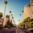 Palm streets of Beverly Hills — Foto Stock