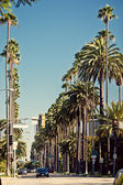Rues des palmiers de beverly hills — Photo