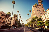 Palm streets of Beverly Hills — Stockfoto