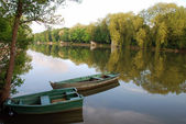 Boats at the Loiret — Stock Photo
