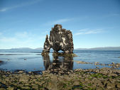 Hvitserkur: is it a troll turned to stone... or just a thirsty amazing dragon? — Stock Photo