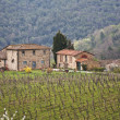 Chianti — Stock Photo #10121656
