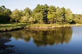 美国湖 — 图库照片