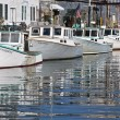 Docks and boats - Photo