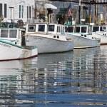 Docks and boats — Stock Photo #8708186