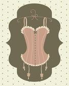 Sexy vintage corset — Stock Vector
