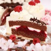 Cream tart with raspberries — Stock Photo