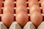 Eggs in a box — Stock Photo