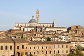 Siena,Tuscany Italy — Stock Photo