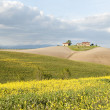 Tuscany - Stock Photo