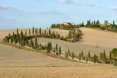 Tusacny - Crete Senesi — Stock Photo