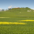 Spring in Tuscany - Stock Photo