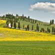 Stock Photo: Spring in Tuscany