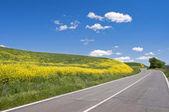 Tuscan road — Stock Photo