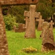 Old cemetery with many tombstones — Stock Photo #8771590