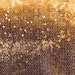 Stock Photo: Honeycomb mesh