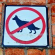 Sign prohibiting walk out dogs in park on red brick house wall - ストック写真