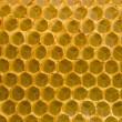 Stock Photo: Honeycomb fo honey closeup macro background.
