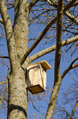 Nesting-box for bird nailed hanging on tree branch — Stock Photo
