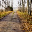 Gravel road, abandoned house and autumn trees. — Stock Photo
