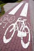 Cycle path mark. Special traffic lane for bicycles — Stock Photo
