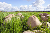 Stone stack pile grass surround agricultural field — Stock Photo