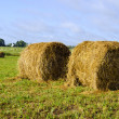 Royalty-Free Stock Photo: Twisted haystack in meadow animal feed for winter