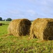 Twisted haystack in meadow animal feed for winter — Stock Photo
