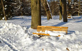 Yellow park bench covered with snow in winter — Stok fotoğraf