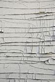 Telón de fondo de grunge madera pintura blanca peeling — Foto de Stock