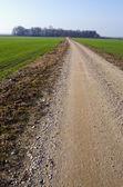 Strada di ghiaia rurale tra campi agricoli — Foto Stock