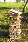 Birch firewood loaded stack Organic fuel fireplace — Stock Photo