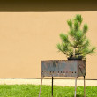 Rusty metal portable grill and spruce grow in pot — Stockfoto