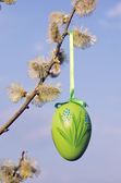 Spring easter sign egg hanging pussy willow branch — Stock Photo