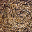 Close-up of straw bales - Stock Photo