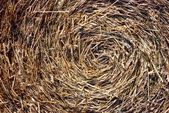 Close-up of straw bales — Stock Photo