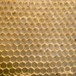 Honeycomb mesh — Stock Photo #9800149