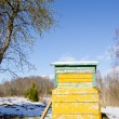 Bee hive home in spring garden melt snow and sky — Stock Photo #9812648