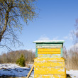 Stock Photo: Bee hive home in spring garden melt snow and sky