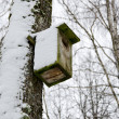 Royalty-Free Stock Photo: Bird nesting box snowy attached birch tree winter