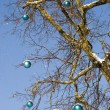 Snow on blue christmas toys decoration hang branch — Stock Photo