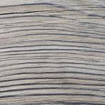 Wood texture — Stock Photo #9154867
