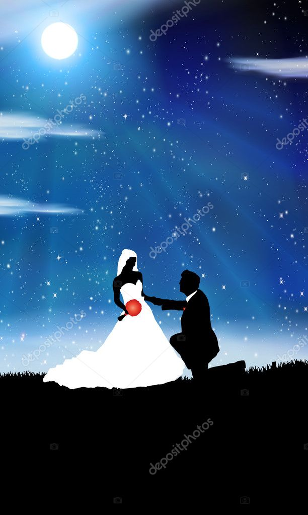 Wedding background -man and woman in the night — Stock Vector #8317564