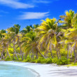 Stock Photo: Beautiful tropical beach with palm trees postcard