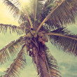 Beautiful tropical beach with palm trees retro — Stock Photo